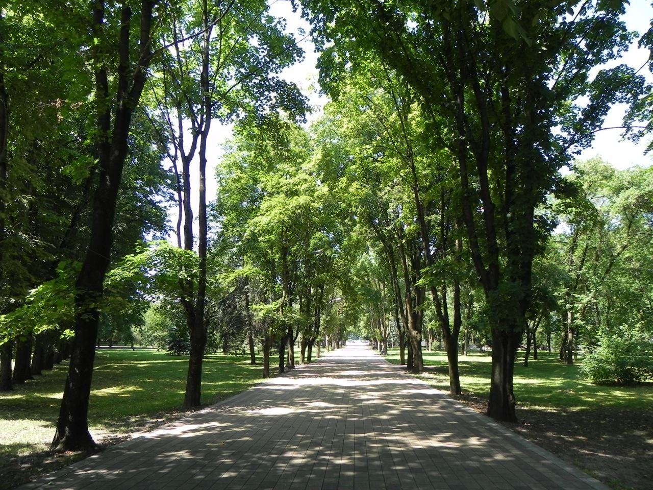Новый парк в москве зарядье фото